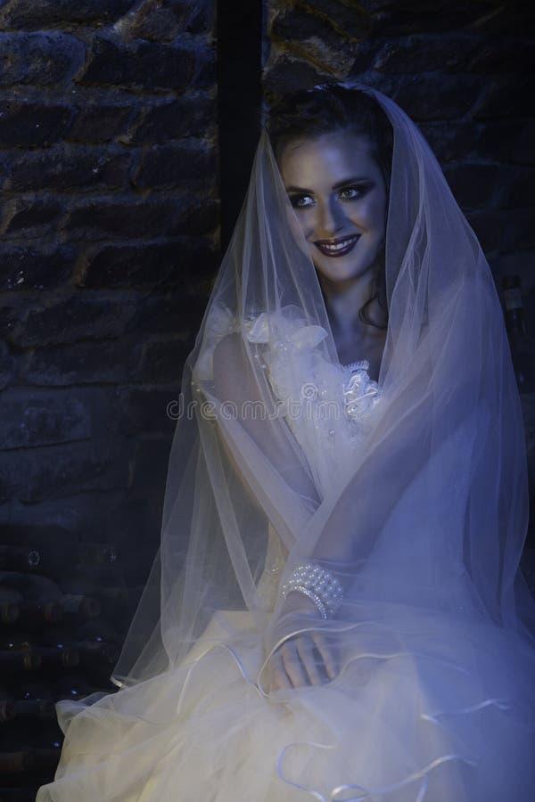 Gelukkige bruid met sluier in wijnkelder stock foto