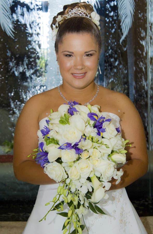 Gelukkige bruid voor waterval stock fotografie