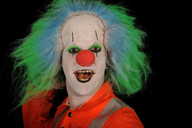 Gelukkige clown met groene pruik stock foto