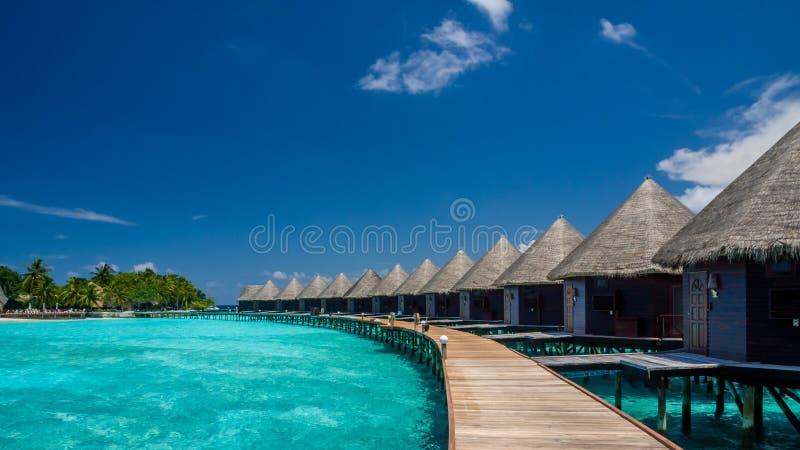 Gelukkige dagen in Maledivisch stock fotografie