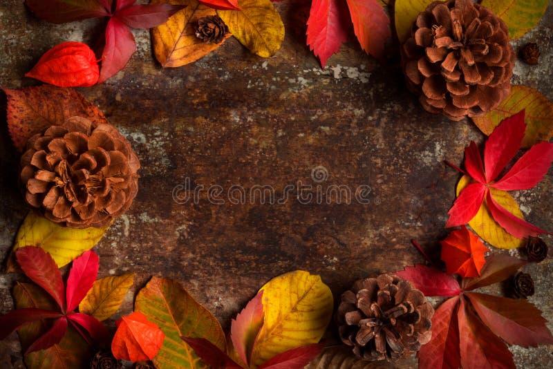 Gelukkige Dankzegging De herfstkleur gevallen bladeren op donkere houten achtergrond Autumn Holiday stilleven stock afbeeldingen