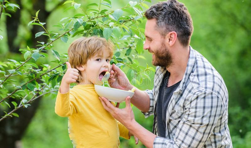 Gelukkige de vadersdag van het ochtendontbijt Weinig jongen met papa eet graangewas Gezond voedsel en het op dieet zijn Zuivel pr stock afbeelding