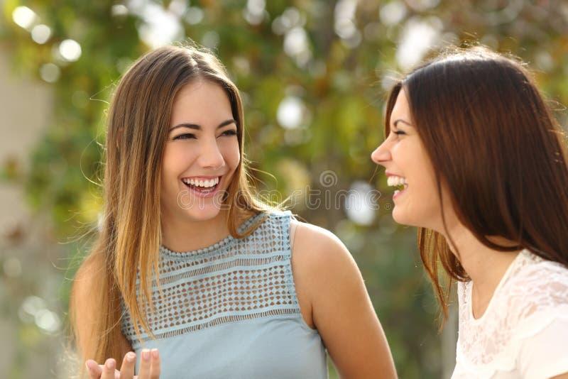 Gelukkige en vrouwen die spreken lachen stock afbeeldingen