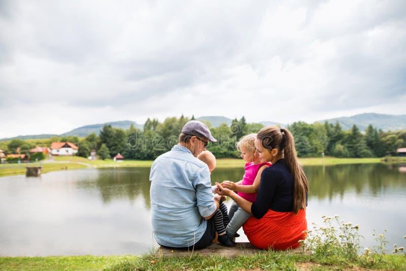 Gelukkige familie in aard in de zomer stock fotografie