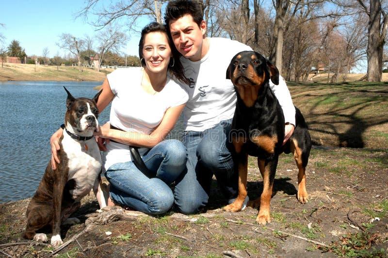 Gelukkige Familie met Honden royalty-vrije stock foto's
