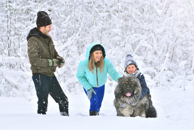Gelukkige familie: moeder, vader, zoon en hun grote hond royalty-vrije stock foto's