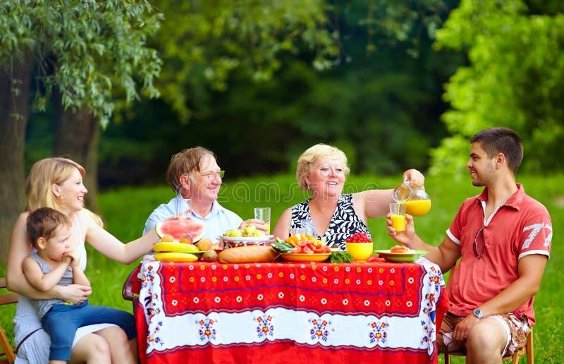 Gelukkige familie op kleurrijke picknick, in openlucht stock fotografie