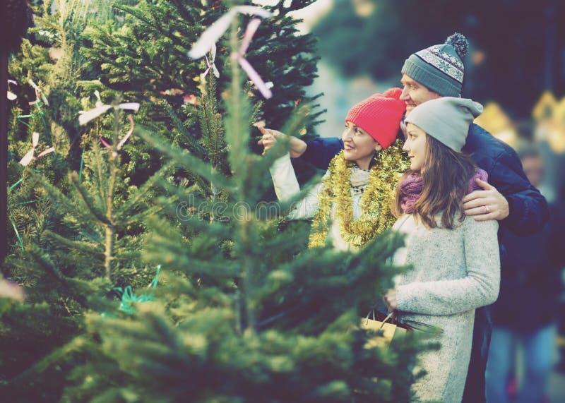 Gelukkige familie van drie die Kerstboom kiezen royalty-vrije stock afbeelding