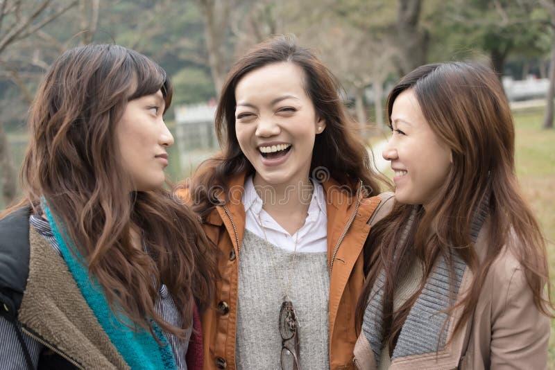 Gelukkige glimlachende Aziatische vrouwen in het park stock foto's