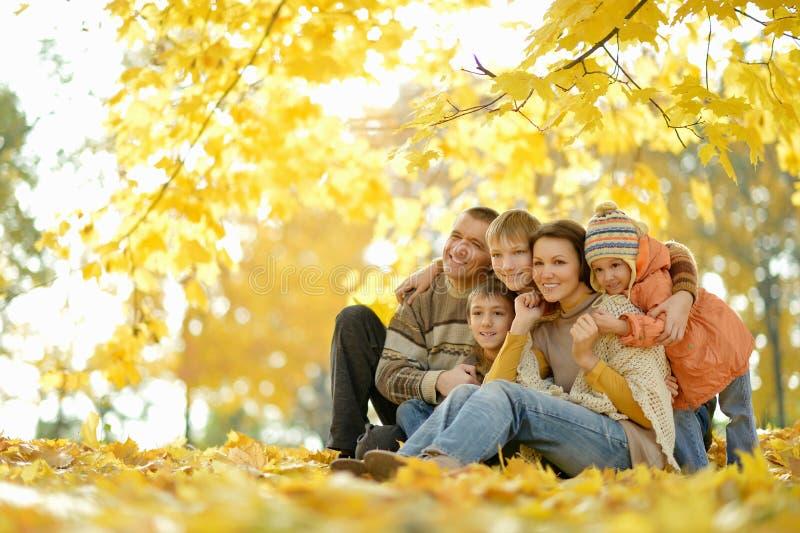 Gelukkige glimlachende familie royalty-vrije stock afbeelding