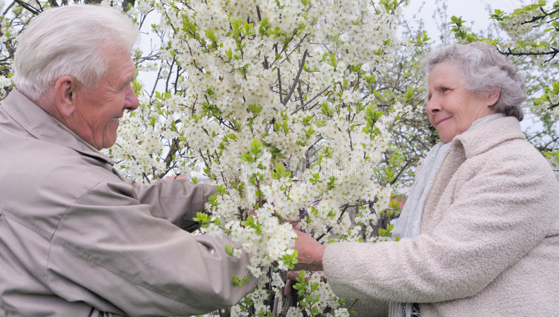 Gelukkige grootouders in bloeiende tuin stock foto