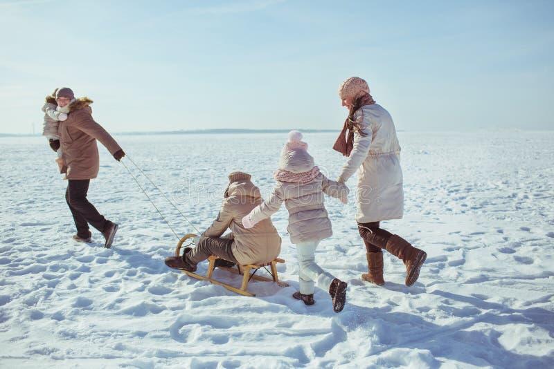 Gelukkige grote familiegang op een gebied in de winter & x28; achterview& x29; stock afbeeldingen