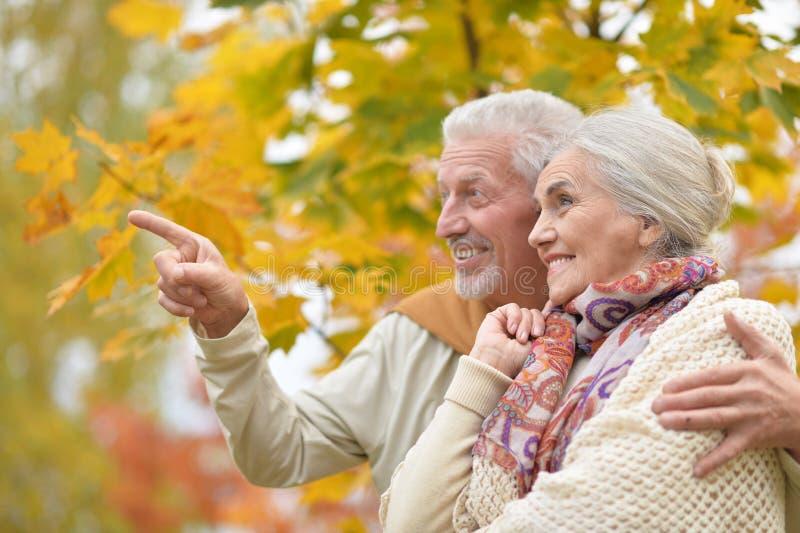 Gelukkige hogere vrouw en man in park stock fotografie
