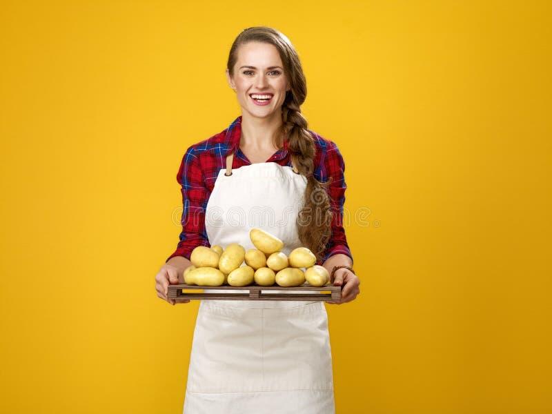 Gelukkige jonge die vrouwenkok op gele tonende aardappels wordt geïsoleerd stock foto
