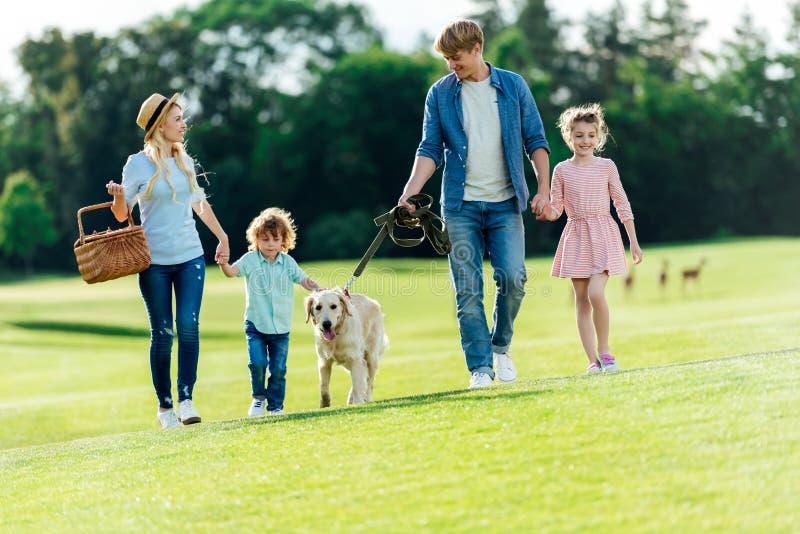 gelukkige jonge familie die met huisdier op groene weide lopen stock afbeeldingen