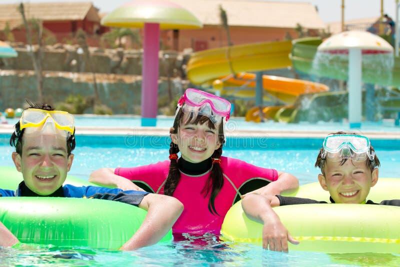 Gelukkige jonge geitjes in de pool stock afbeelding