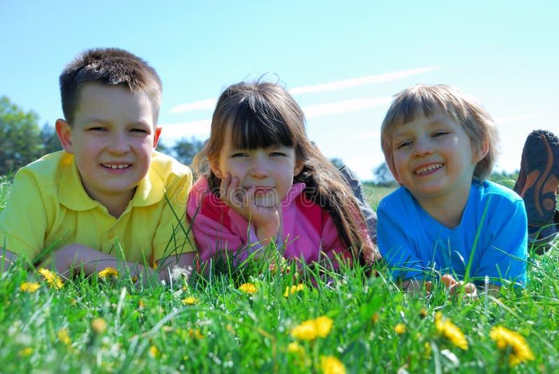 Gelukkige jonge geitjes in gras stock afbeeldingen