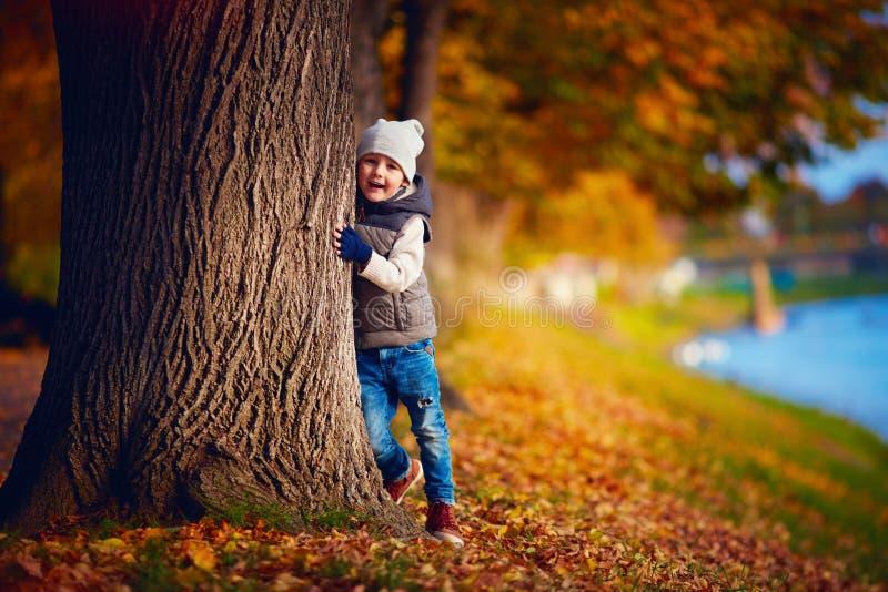 Gelukkige jonge jongen die pret in de herfstpark hebben stock afbeeldingen