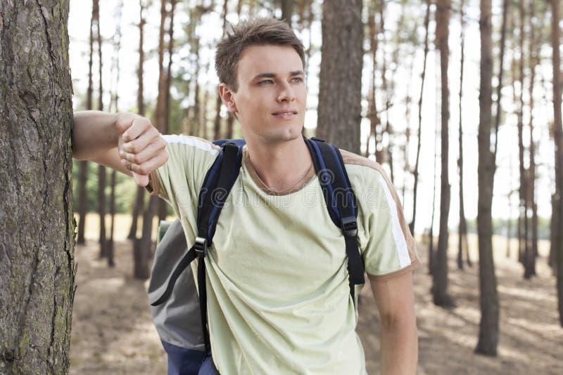 Gelukkige jonge mens die met rugzak in hout wandelen royalty-vrije stock foto