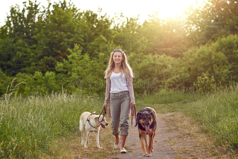 Gelukkige jonge vrouw die haar honden langs een grasrijk landelijk spoor lopen stock foto's