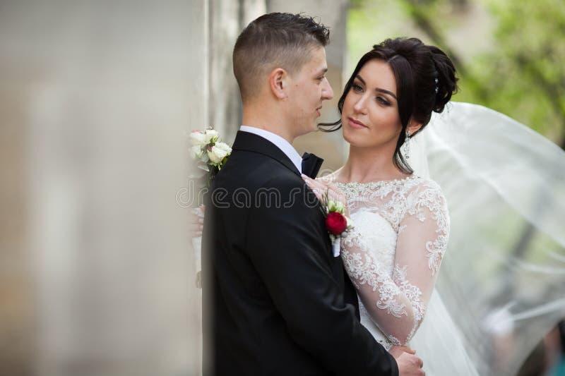 Gelukkige jonggehuwde donkerbruine bruid die knappe bruidegom koesteren dichtbij oude wa stock afbeelding