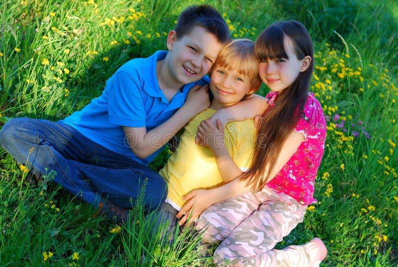 Gelukkige kinderen in een weide royalty-vrije stock fotografie