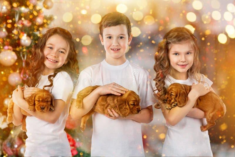 Gelukkige kinderen en honden naast Kerstboom Nieuw jaar 2018 Vakantieconcept, Kerstmis, Nieuwe jaarachtergrond stock foto's