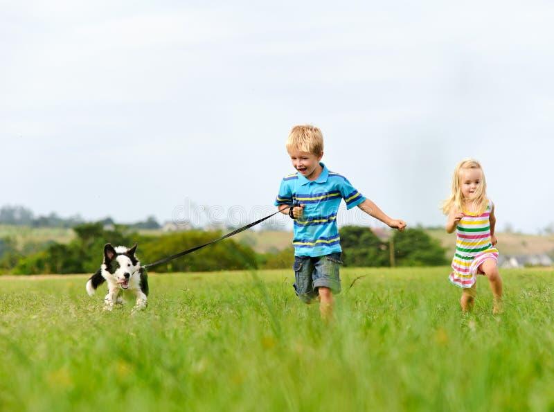 Gelukkige kinderen met hond stock foto