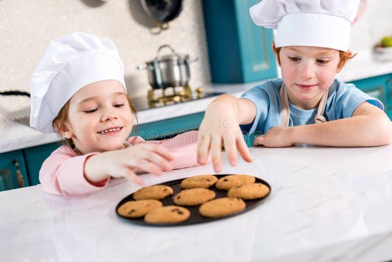 gelukkige kleine jonge geitjes die in chef-kokhoeden smakelijke koekjes eten royalty-vrije stock foto's