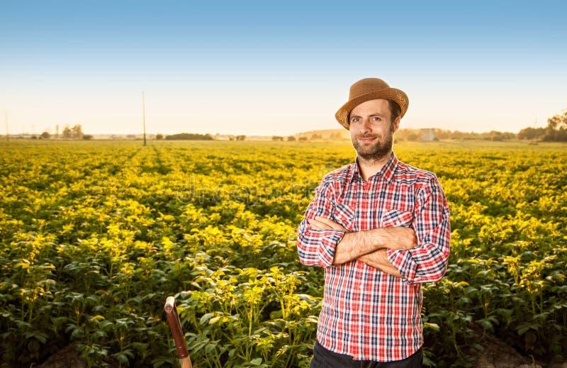 Gelukkige landbouwer die zich voor het landschap van het aardappelsgebied bevinden royalty-vrije stock afbeelding