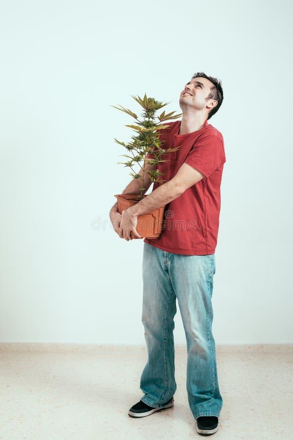 Gelukkige mens met cannabisinstallatie stock afbeelding