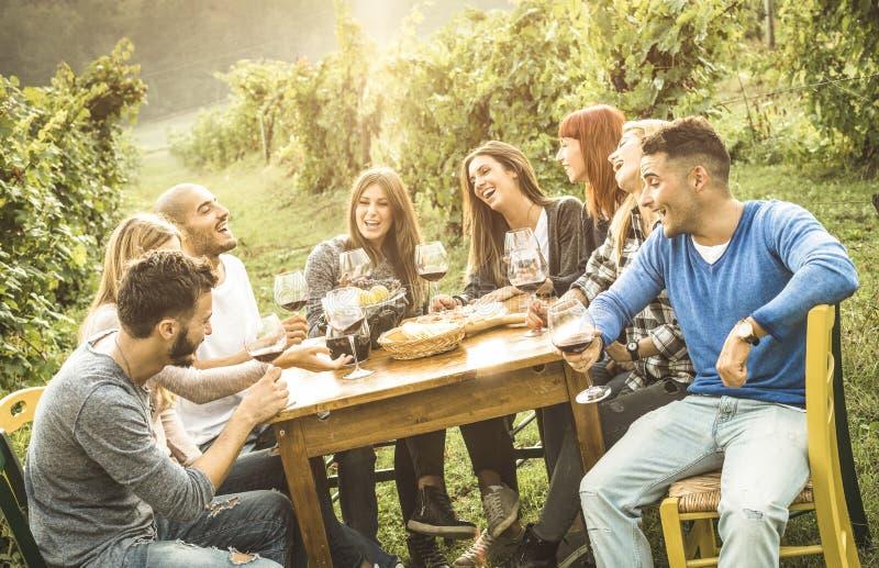 Gelukkige mensenvrienden die pret openlucht het drinken rode wijn hebben bij wijngaard stock afbeelding
