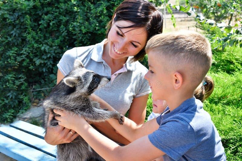 Gelukkige moeder met haar kinderen die met een wasbeer spelen royalty-vrije stock foto