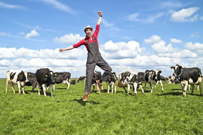 Gelukkige Nederlandse landbouwer met zijn koeien royalty-vrije stock foto's