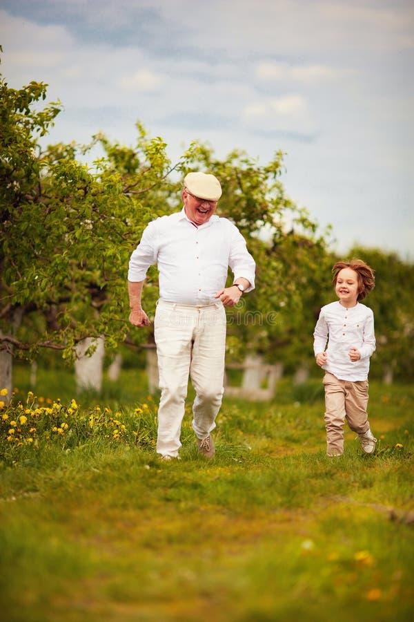 Gelukkige opgewekte opa en kleinzoon die in de lentetuin lopen stock afbeeldingen