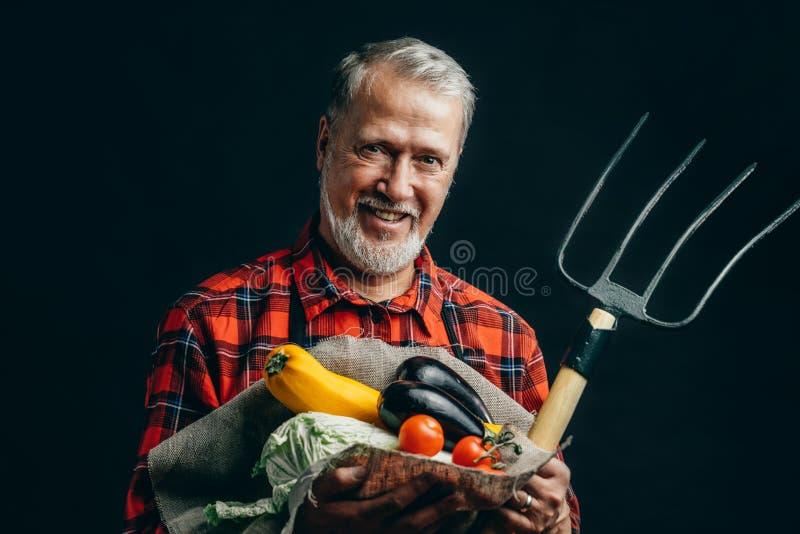 Gelukkige oude mens met een kool, tomaten, een aubergine, pompoen royalty-vrije stock fotografie
