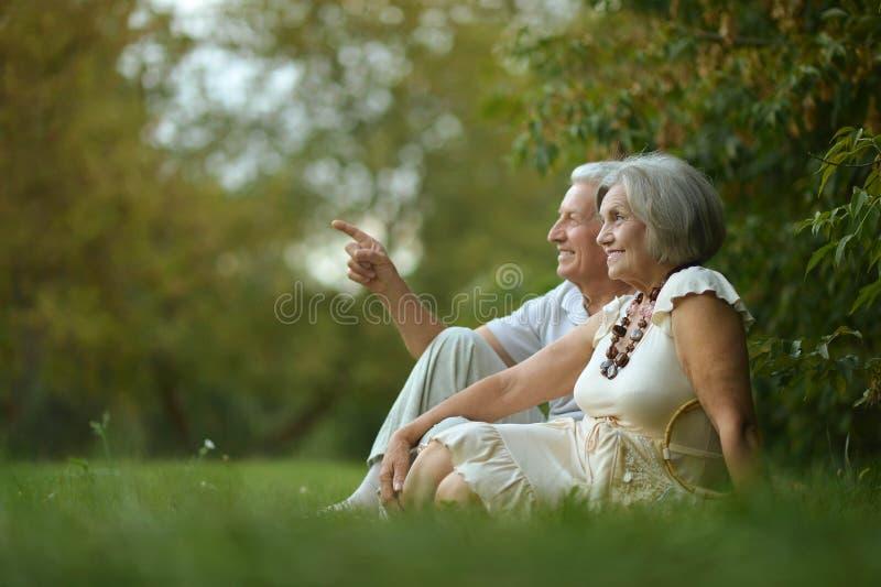 Gelukkige oude mensen royalty-vrije stock afbeeldingen
