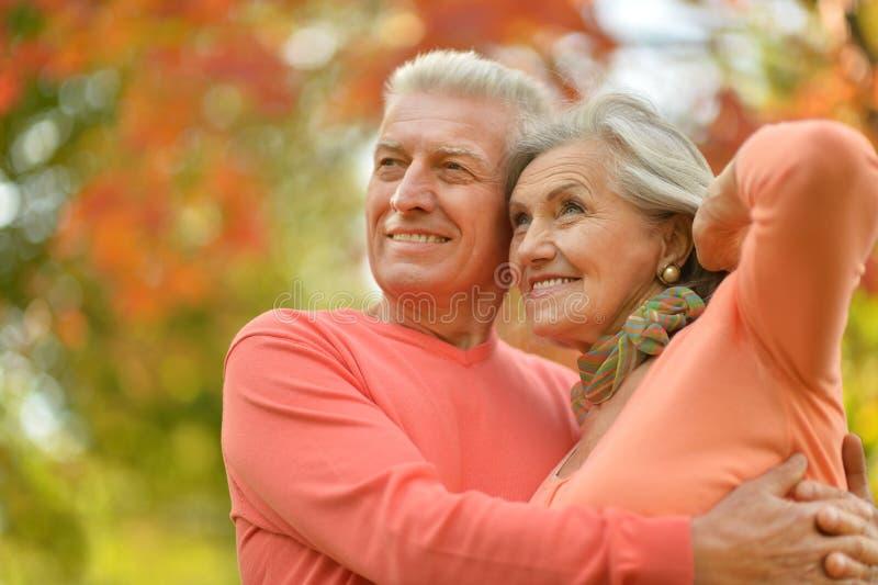 Gelukkige oude mensen stock foto