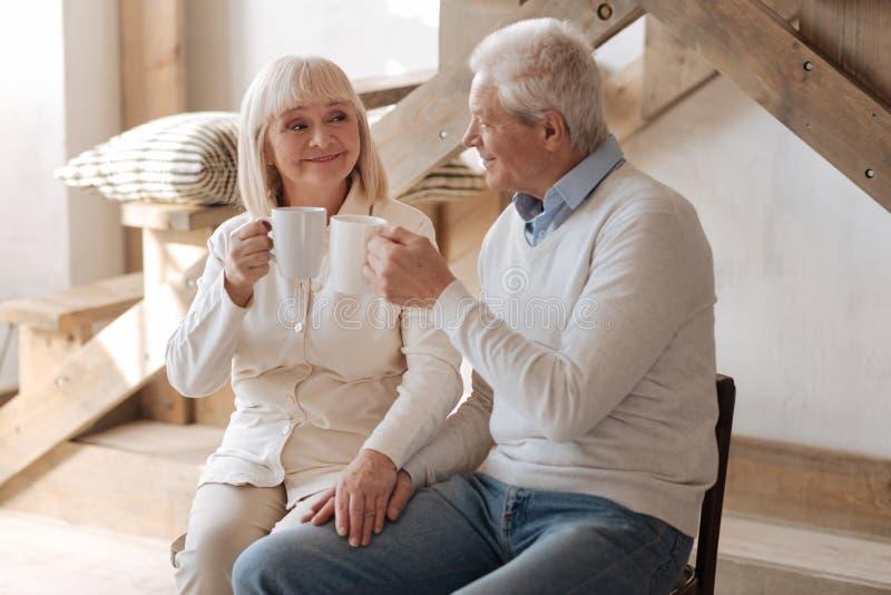Gelukkige oude paar het drinken thee royalty-vrije stock afbeelding