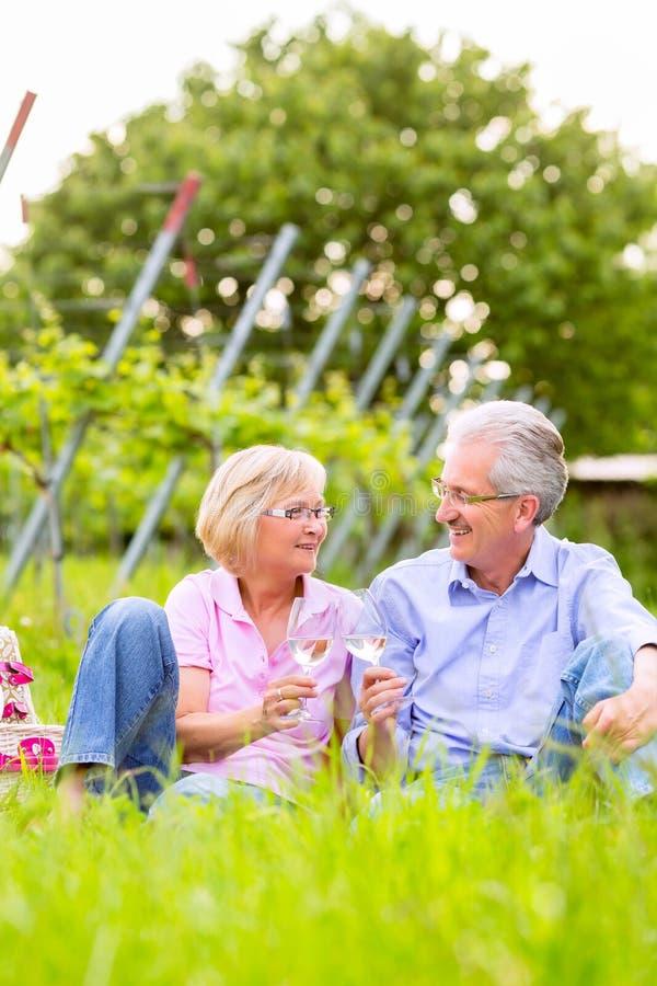 Gelukkige oudsten die picknick het drinken wijn hebben royalty-vrije stock afbeeldingen