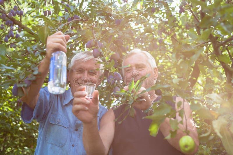 Gelukkige oudsten met alcohol onder fruitbomen stock foto
