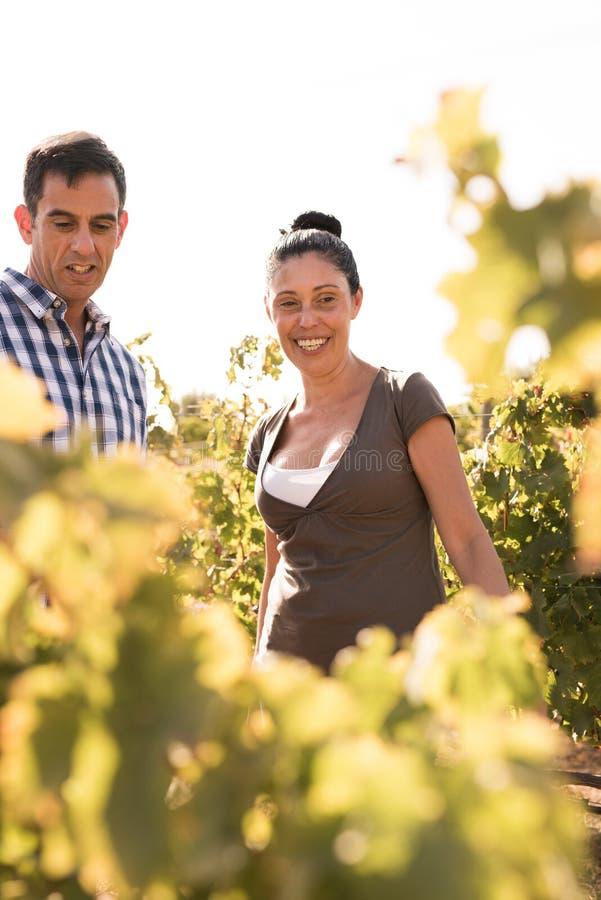 Gelukkige paar het besteden tijd in de wijngaarden royalty-vrije stock afbeelding