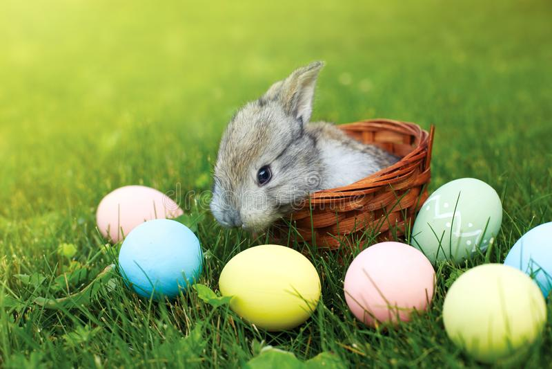 Gelukkige Pasen! Achtergrond met kleurrijke eieren in mand stock afbeelding