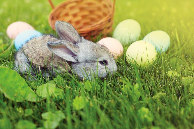 Gelukkige Pasen! Achtergrond met kleurrijke eieren in mand royalty-vrije stock fotografie