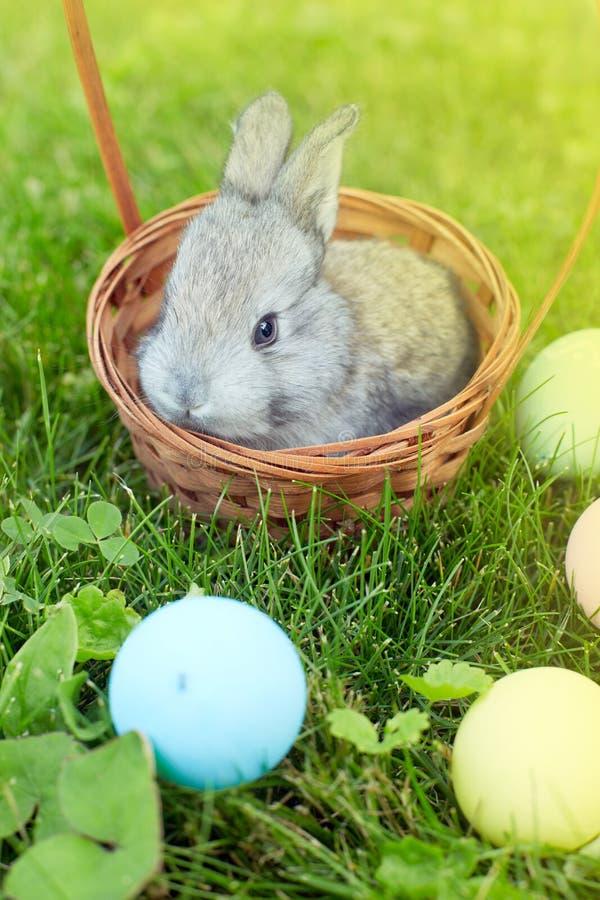 Gelukkige Pasen! Achtergrond met kleurrijke eieren in mand royalty-vrije stock foto's