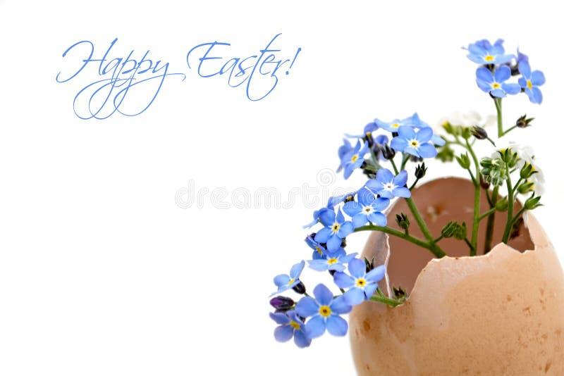 Gelukkige Pasen-kaart met de lentebloemen in eierschaal stock foto's