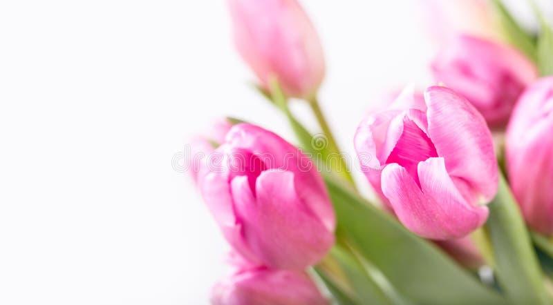 Gelukkige Pasen Multicolored de lentetulpen en paaseieren De lente en Pasen-decoratie stock fotografie