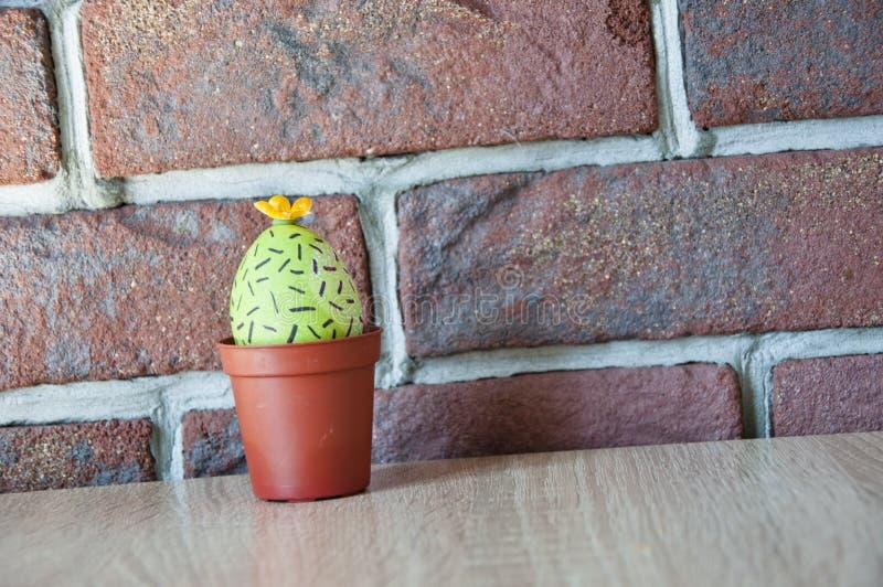 Gelukkige Pasen Natuurlijke kleurstof Eijacht cooking Ongebruikelijk idee De lentezaailingen serre Cactus het bloeien Het beeld w stock afbeelding