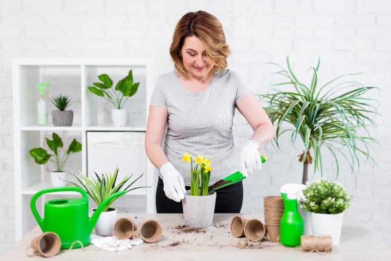Gelukkige rijpe vrouw die de lentebloemen in potten thuis planten royalty-vrije stock foto
