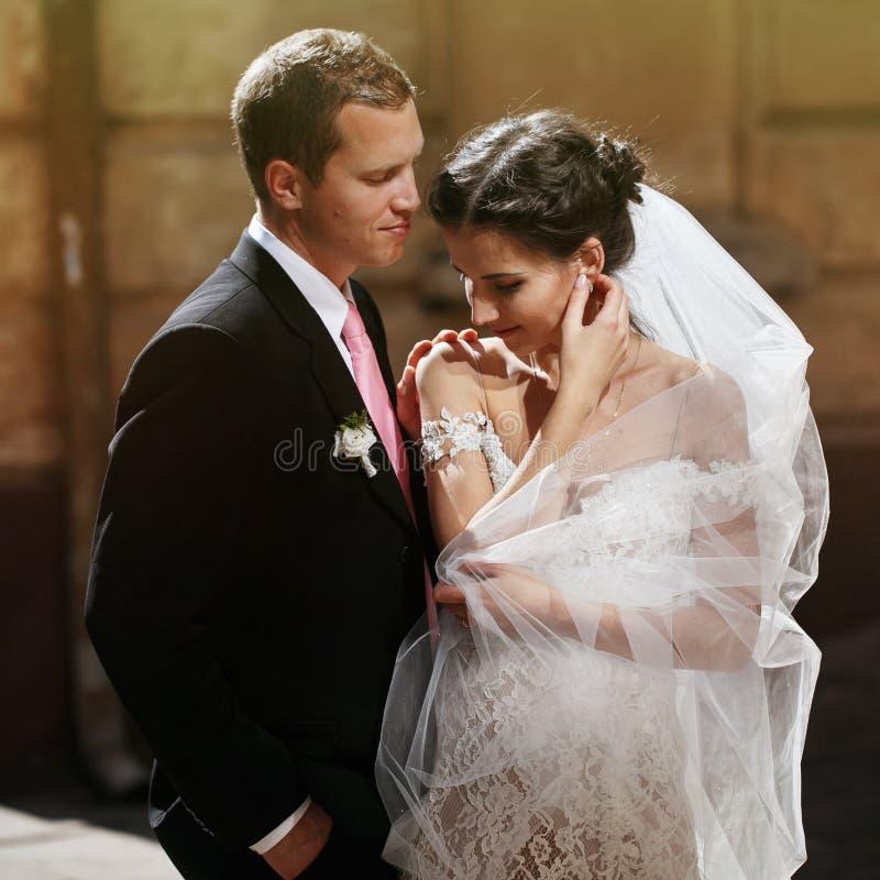 Gelukkige sensuele donkerbruine bruid met sluier het stellen in openlucht met groo stock afbeeldingen
